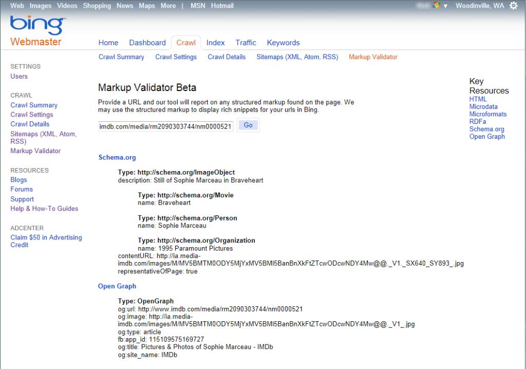 Markup Validator screen in Bing Webmaster Tools