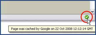 Google Cache Tool