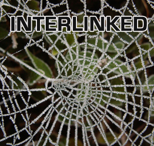 5 Reasons To Improve Your Internal Linking Today