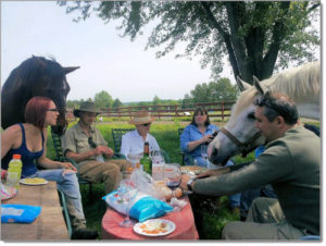 Horses and people having lunch.