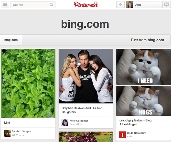 Pinterest Domain Search