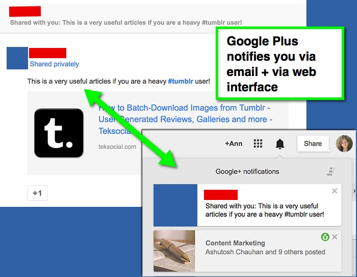 Google Plus notifications